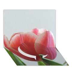 Red Tulips Circle Bottom 3d Greeting Card (7x5) by picsaspassion