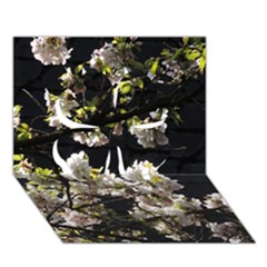 Japanese Cherry Flower Clover 3d Greeting Card (7x5) by picsaspassion
