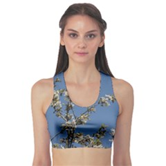 White Cherry Flowers And Blue Sky Sports Bra by picsaspassion