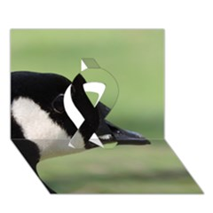 Goose, Black And White Ribbon 3d Greeting Card (7x5) by picsaspassion