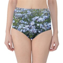Little Blue Forget Me Not Flowers High Waist Bikini Bottoms