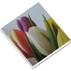 Colored By Tulips Small Memo Pads by picsaspassion