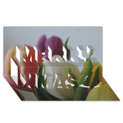 Colored By Tulips Merry Xmas 3d Greeting Card (8x4) by picsaspassion