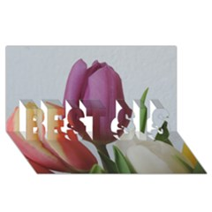 Tulip Spring Flowers Best Sis 3d Greeting Card (8x4) by picsaspassion