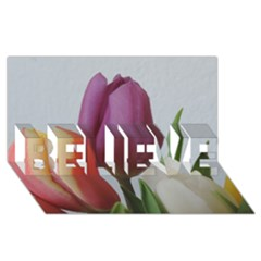 Tulip Spring Flowers Believe 3d Greeting Card (8x4)