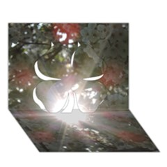 Sun Rays Through White Cherry Blossoms Clover 3d Greeting Card (7x5)
