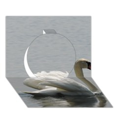Swimming White Swan Circle 3d Greeting Card (7x5) by picsaspassion