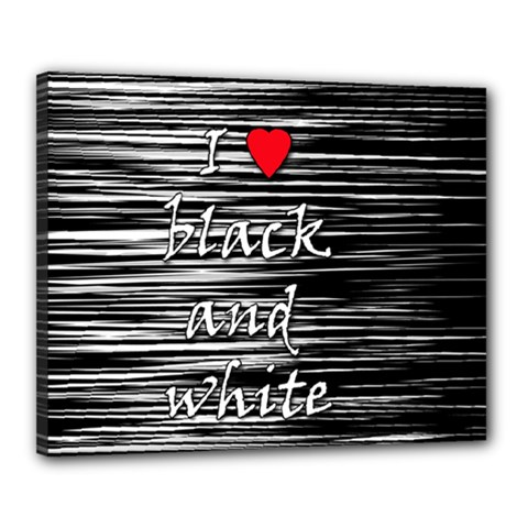 I love black and white 2 Canvas 20  x 16