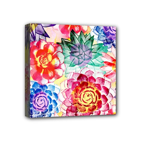 Colorful Succulents Mini Canvas 4  X 4  by DanaeStudio