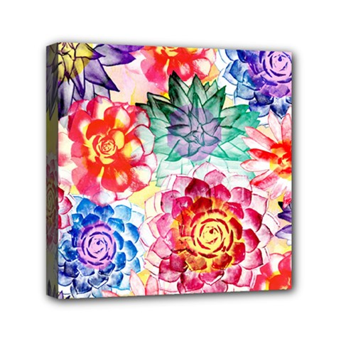 Colorful Succulents Mini Canvas 6  X 6  by DanaeStudio