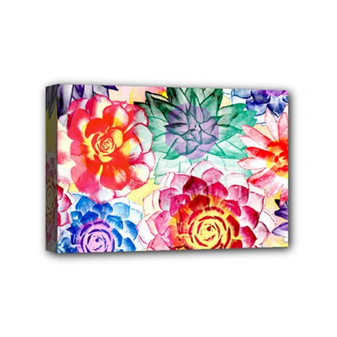 Colorful Succulents Mini Canvas 6  X 4  by DanaeStudio