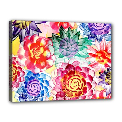 Colorful Succulents Canvas 16  x 12