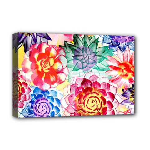 Colorful Succulents Deluxe Canvas 18  X 12   by DanaeStudio