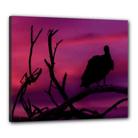 Vultures At Top Of Tree Silhouette Illustration Canvas 24  x 20