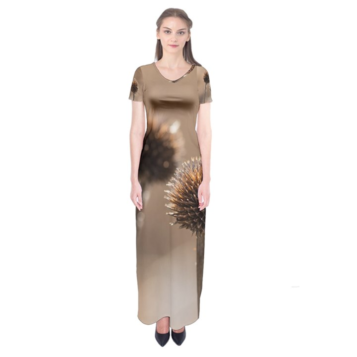 2  Verwelkte Kugeldistel Short Sleeve Maxi Dress