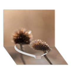 Withered Globe Thistle In Autumn Macro Heart Bottom 3d Greeting Card (7x5) by wsfcow