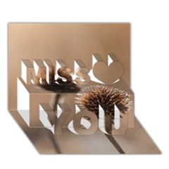 Withered Globe Thistle In Autumn Macro Miss You 3d Greeting Card (7x5) by wsfcow
