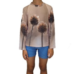 Withered Globe Thistle In Autumn Macro Kids  Long Sleeve Swimwear by wsfcow
