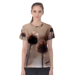 Withered Globe Thistle In Autumn Macro Women s Sport Mesh Tee by wsfcow