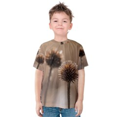 Withered Globe Thistle In Autumn Macro Kids  Cotton Tee by wsfcow