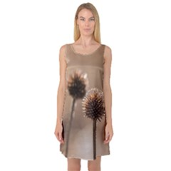 Withered Globe Thistle In Autumn Macro Sleeveless Satin Nightdress by wsfcow