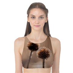 Withered Globe Thistle In Autumn Macro Tank Bikini Top