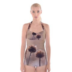 Withered Globe Thistle In Autumn Macro Boyleg Halter Swimsuit  by wsfcow