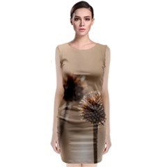 Withered Globe Thistle In Autumn Macro Classic Sleeveless Midi Dress by wsfcow