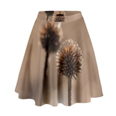 Withered Globe Thistle In Autumn Macro High Waist Skirt by wsfcow