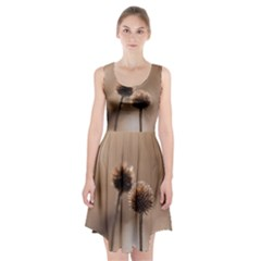 Withered Globe Thistle In Autumn Macro Racerback Midi Dress by wsfcow
