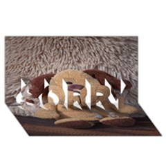 Stuffed Animal Fabric Dog Brown Sorry 3d Greeting Card (8x4)