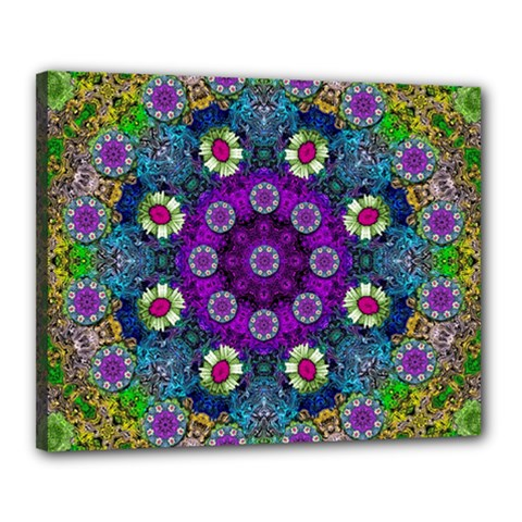 Colors And Flowers In A Mandala Canvas 20  X 16  by pepitasart