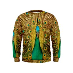 Bird Peacock Feathers Kids  Sweatshirt by AnjaniArt