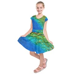 Blue Peacock Feathers Kids  Short Sleeve Dress