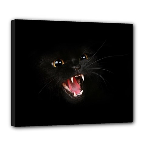 Cat Animal Cute Deluxe Canvas 24  X 20   by AnjaniArt