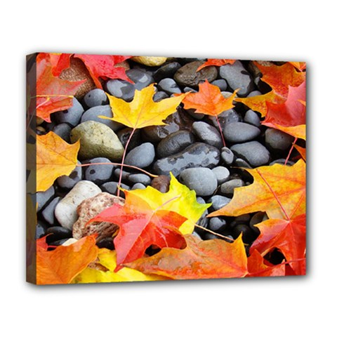 Colorful Leaves Stones Canvas 14  X 11  by AnjaniArt