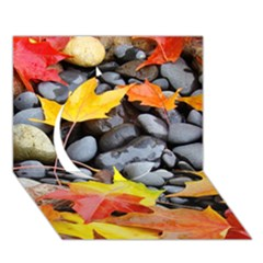 Colorful Leaves Stones Circle 3d Greeting Card (7x5)