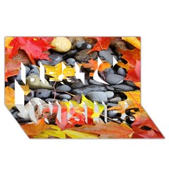 Colorful Leaves Stones Best Wish 3d Greeting Card (8x4) by AnjaniArt