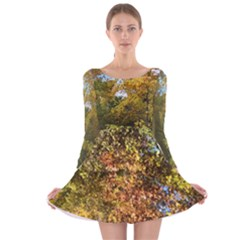 Vermont Autumn Trees Long Sleeve Velvet Skater Dress