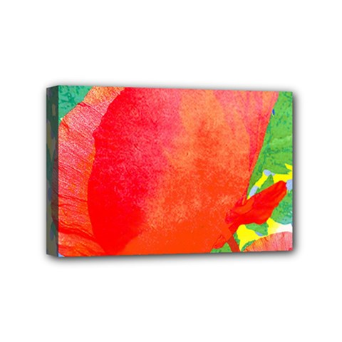 Lovely Red Poppy And Blue Dots Mini Canvas 6  X 4