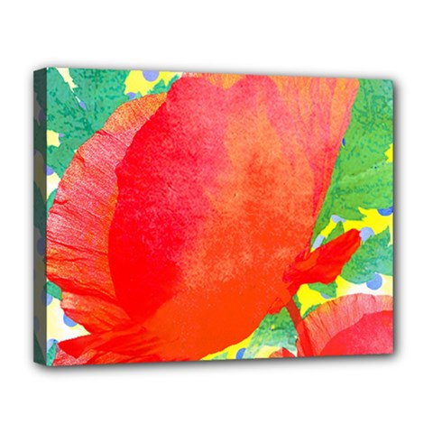 Lovely Red Poppy And Blue Dots Canvas 14  X 11