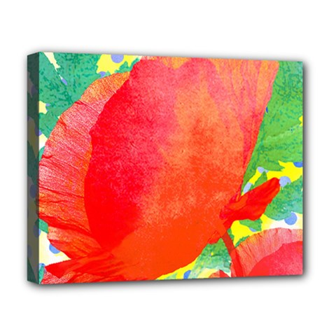 Lovely Red Poppy And Blue Dots Deluxe Canvas 20  X 16