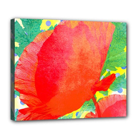 Lovely Red Poppy And Blue Dots Deluxe Canvas 24  X 20