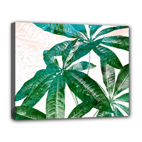 Pachira Leaves  Canvas 14  X 11  by DanaeStudio