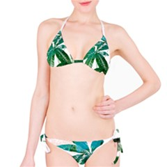 Pachira Leaves  Bikini Set
