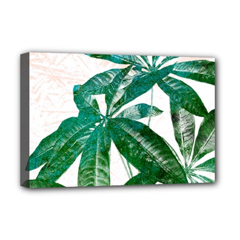 Pachira Leaves  Deluxe Canvas 18  X 12