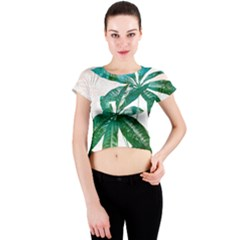 Pachira Leaves  Crew Neck Crop Top