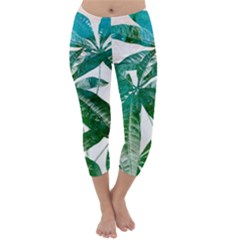 Pachira Leaves  Capri Winter Leggings  by DanaeStudio