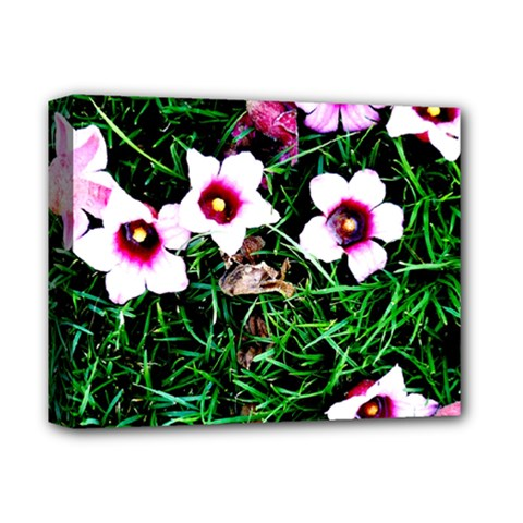 Pink Flowers Over A Green Grass Deluxe Canvas 14  X 11