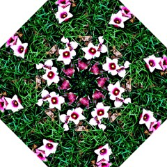 Pink Flowers Over A Green Grass Hook Handle Umbrellas (medium)